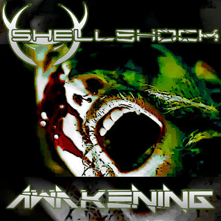 Awakening - Single (2012) on iTunes